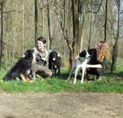 Valeene, Bruce, & Hercules (L to R) in France!