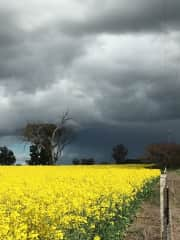 Love taking photos.  This is home Tocumwal NSW.