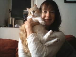 Long term cat sit Bob, Nimes