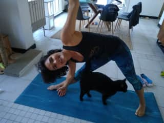 Pets love yoga too!