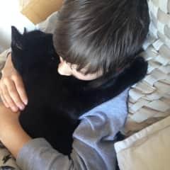 Neko loves cuddles