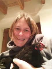 One of my hens, Anneli