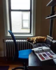 Studying with Coo ~  New York