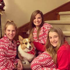 Allie's cousins and Pogo during the annual Christmas photoshoot.