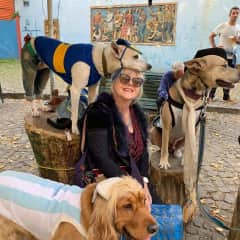Me with rescue dogs Buenos Aires, May 2019.