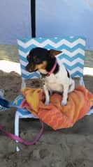Tasha at the beach