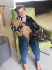 Daughter, Dexter as a puppy and Ziggy