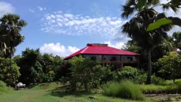 My beautiful home for the winter months in West Bengal, India