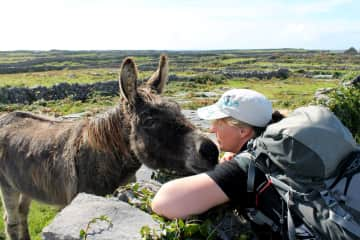 Having a chat with a donkey on Inishmore, Ireland