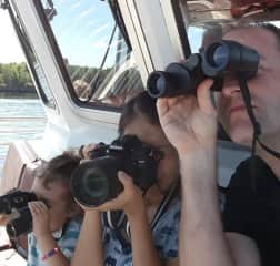 Looking for Bald eagles in Voyageurs National Park