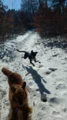 Fun Winter Hiking @ Hodges