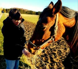 Feeding our farm friend in Bornholm, Denmark