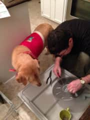 Mark and his helper Sidney repairing  the dishwasher