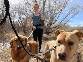Erin, Marley and Teddy on a hike.