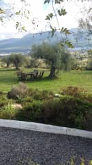 View from the kitchen terrace