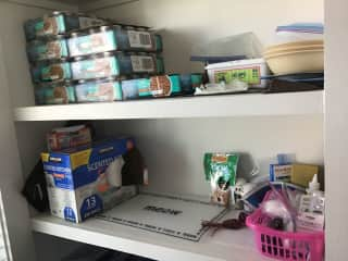 This shelf in the pantry has everything you need for Chesney. He eats on the floor beneath this shelf.
