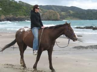 My beautiful horse Bliss