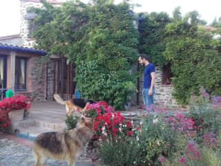 With Buddy and Bella in a beautiful house close to the Canigou