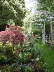 My garden - love creating peaceful spaces
