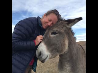 Chloe loves donkeys...well all animals, but she gets a bit extra giddy over donkey love