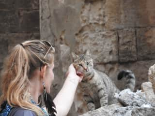 I have a compulsive disorder, that whenever I see a kitty, I just have to see if it wants some love. This was a curious kitty in Mardin, Turkey, that took me about 15 minutes to gain the trust from. My friend captured this amazing moment of first contact.