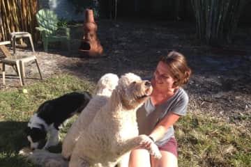 Sierra Pet Sitting