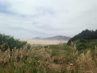 Sand dunes near Cape Kiwanda, OR (1 hr north of farm)