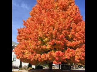 """Autumn is the North East of the United Sates...The beautiful """"Change of Leaves"""" as it is called."""