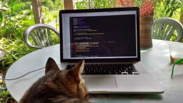 Kitty Code review (US Virgin Islands)