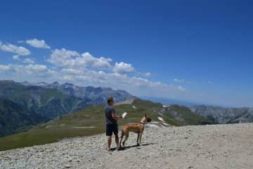 We can definitely handle big dogs!  In this picture, Jordan walks Samson the Great Dane through the Rockies.