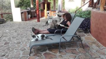 Enjoying a morning read around the pool with a few furry friends - Sorá, Panama