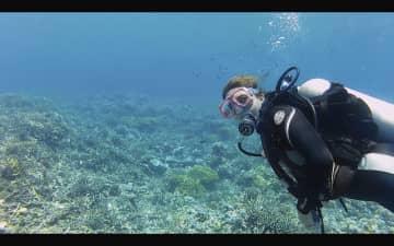Scuba diving near Little Corn Island, Nicaragua