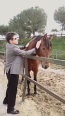 Andalucia Spain Jan 2020. Todd giving a beautiful horse some love before the horse show.