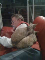 Peter house sitting some cats