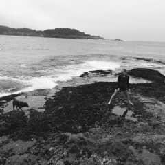 California Beach Walks with Caddy