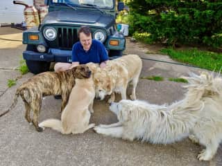 Tim surrounded by 4 adoring dogs