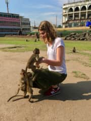 Amy teaching the baby monkeys that jewellery is not a toy!