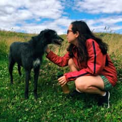 Petsitting on Lummi Island with Leo