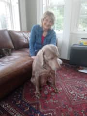 Our first sit with Coco in Brackley