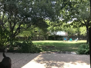view of backyard from back patio