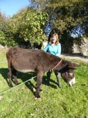 Kerrylea brushing Coco the donkey, house sitting 2016