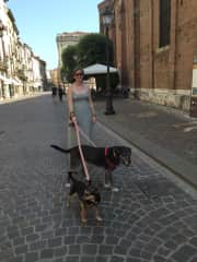 Lacey walking Biggie and Roxie