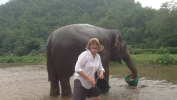 Me washing an elephant in Thailand(please dont ask me to look after an elephant though!)