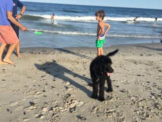 Rafa at the beach with Mercy the poodle we helped raise and train to be a service dog