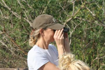on safari in South Africa, spotting cats big & small!
