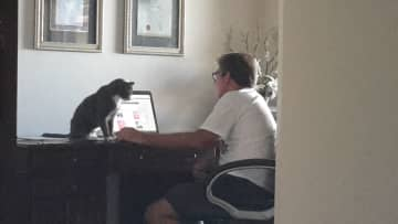 Mike and Baxter surfing the Web.  Townsville, Aus