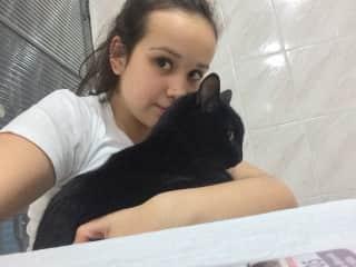 Mariana and Banguela