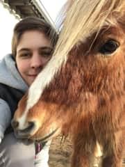 We love Icelantic Horses!