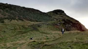 Walking and ball throwing with 15mth old border collie Oscar in Edinburgh