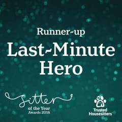 I was selected as the Last Minute Hero category for Sitter of the Year 2018. My sincere thanks goes to Johanna for her nomination.